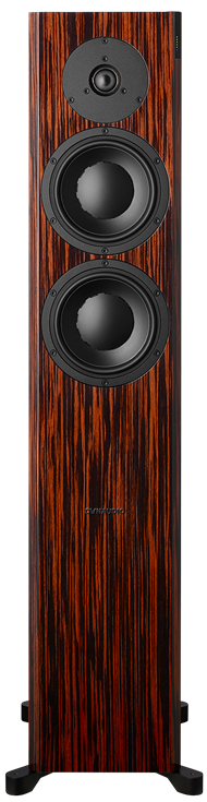 Front of Focus 30 XD in Rosewood Dark High Gloss